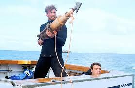 Shark killer Matt